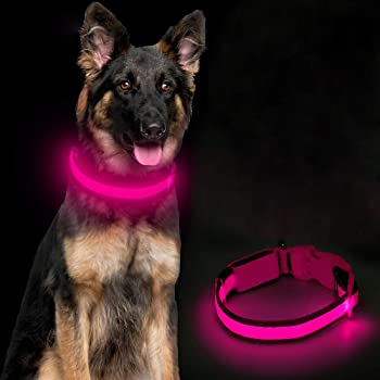 Ezier USB Rechargeable LED Dog Collar - Walking Lights for Dogs, Mesh Adjustable Safety Light Up Pet Collars, Basic Dog Collars, Glowing Loops Make Your Dogs Be Seen &Safe