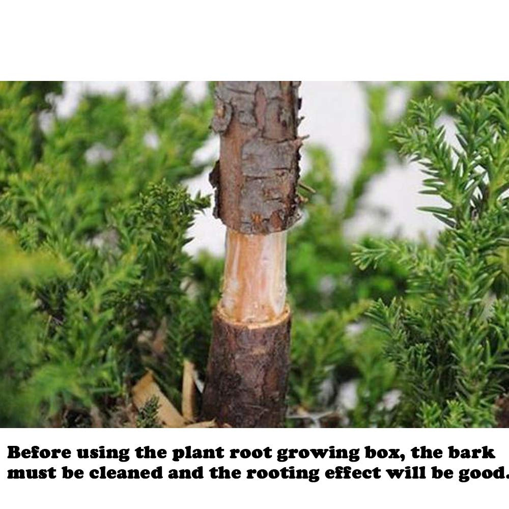 Plant Root Growing Box 6 PCS Combination Reasable Plant Root ...