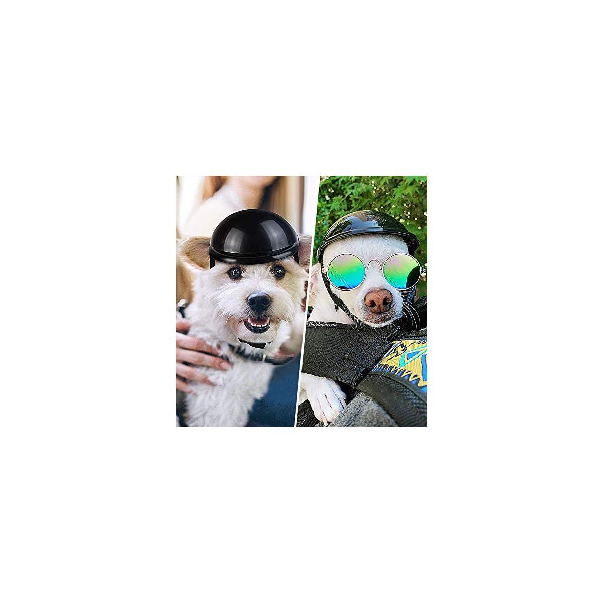 Casco Per Cani Per Motociclette LLMZ 1 Pcs Cani Di Piccola Taglia Piccolo Casco Casco Moto Regolabile Per Cani Per Bici Motocicletta Protezione Di Sicurezza Per Auto o Gatti Cani Per Esterno