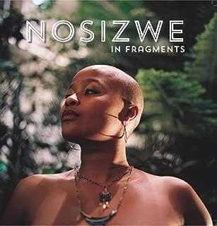 nosizwe in fragments