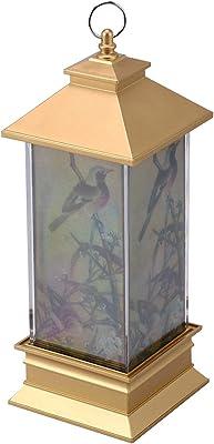 Amazon.com: 2-Light Pedestal Luz Fixture: Home Improvement