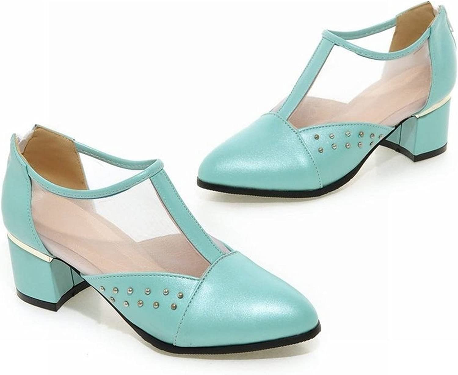 Tirahse Sweet Women's Studded Voile mesh Zip Fashion Pointed Toe Chunky mid Heel Casual shoes