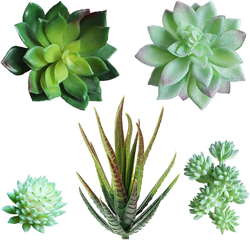 Supla Pack Of 5 Assorted Artificial Echeveria Succulent Picks In Flocked Green And Green 4 1 3 Wide For Floral Arrangement Christmas Accents