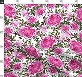 Chrysantheme, Wasserfarben, Mütter, Blumen, Rosa, Garten