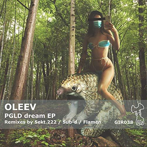 PGLD Dream (Flamen Ambient Remix)