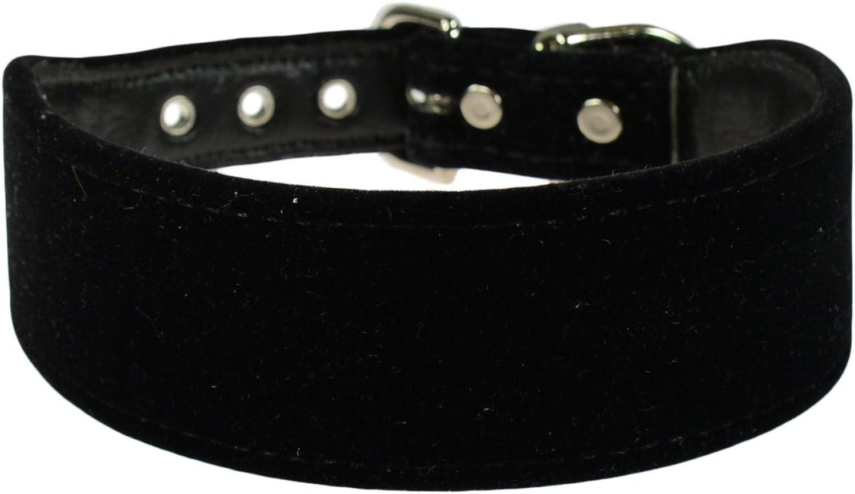 Evans Collars 1 1 4  Shaped Collar, Size 12, Velvet, Black