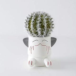 Hushfly Creative Cute Cat Plant Flower Pot Succulent Planters Vase Pencil Holder Cell Phone Holder Stand Multifunction Dec...