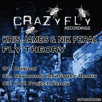 Fly Theory