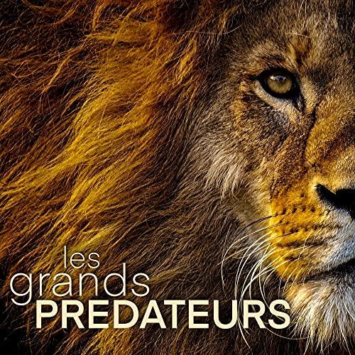 Couverture du livre Les Grands Prédateurs: Imagier pour enfant, ado et adulte sur les animaux les plus dangereux du monde