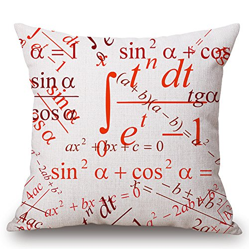 JES&MEDIS Mathematische chemische Formel, Wissenschaftsmuster, Kissen, 45,7 x 45,7 cm
