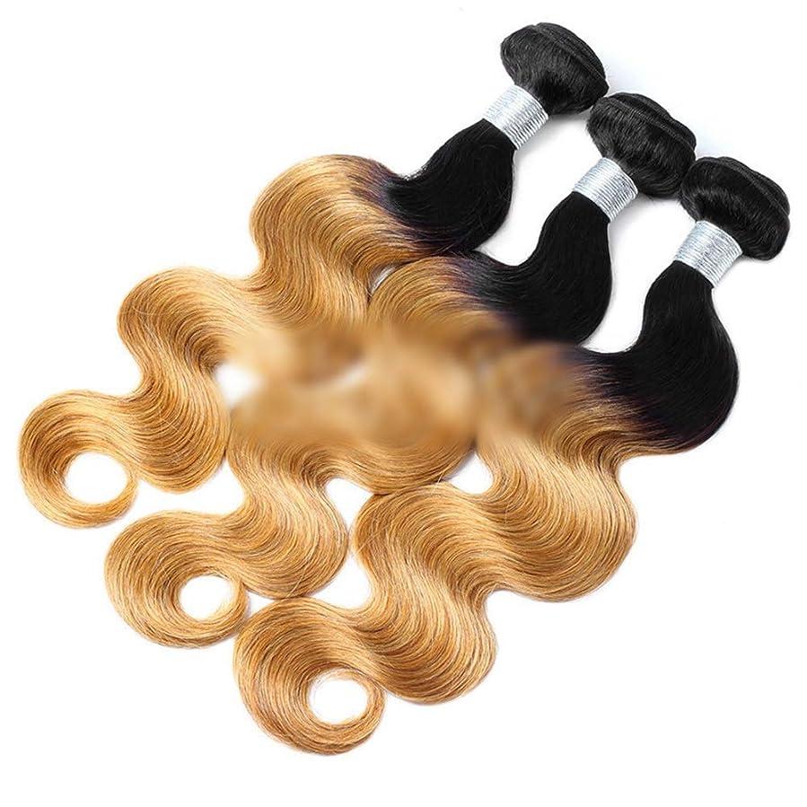 立場政権冗長かつら ブラジルのオンブル人間の髪の実体波の髪の束 - T6#ダークルーツグラデーションブロンドヘアエクステンション(12インチ-24インチ)ビッグウェーブウィッグウィッグ (色 : Blonde, サイズ : 14 inch)