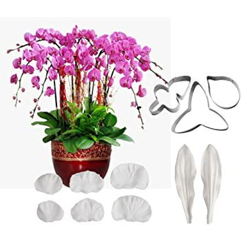 Orchid Petal Veiner Fondant Silicone Mould Cake Decorating Wedding Flowers UK
