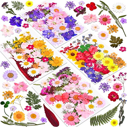 140 Pcs Dried Pressed Flowers for Resin, Real Pressed Flowers Dry Leaves Bulk Natural Herbs Kit for Scrapbooking DIY Art Crafts, Epoxy Resin Jewelry Molds, Candle, Soap Making, Nails Décor