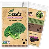 Organic Broccoli Seeds...image