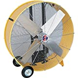 Q Standard 42' Industrial Belt Drive Drum Fan - 10242