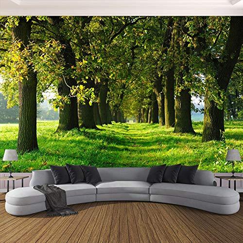 BHXIAOBAOZI vliesbehang, 3D-behang, grote muurfoto, kleine bospaden, voor woonkamer, tv-slaapkamer, achtergrond, wanddecoratie (BH0181) 330cm(W)×210cm(H)