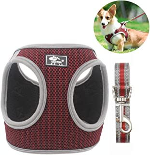 Type Of Dog Harness