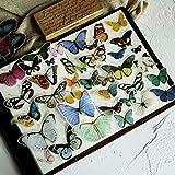 Vintage Butterfly Scrapbook Stickers, Kiniyo DIY Decoration Stickers for Scrapbook (Butterfly,80PCS)