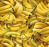 Fat Quarter Bananen Lebensmittel 100% Baumwolle Quilten