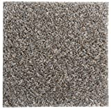 """Smart Squares in A Snap 18"""" x 18"""" Residential Soft Carpet Tile, Peel and Stick, Easy DIY Installation, Seamless Appearance, Made in USA (10 Tiles - 22.5 Sq Ft, 388 Stonehenge)"""