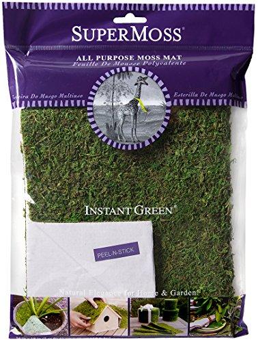 InstantGreen Moss Mat, Peel n Stick