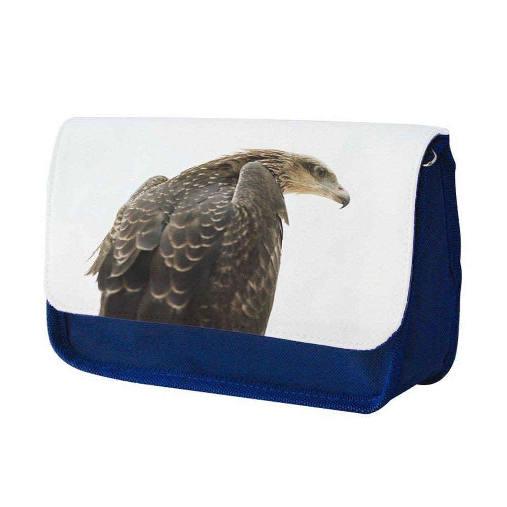 Animales 10014, Aguila, Azul Escuela Niños Sublimación Alta calidad Poliéster Estuche de lápices con Diseño Colorido. 21x13 cm.: Amazon.es: Oficina y papelería