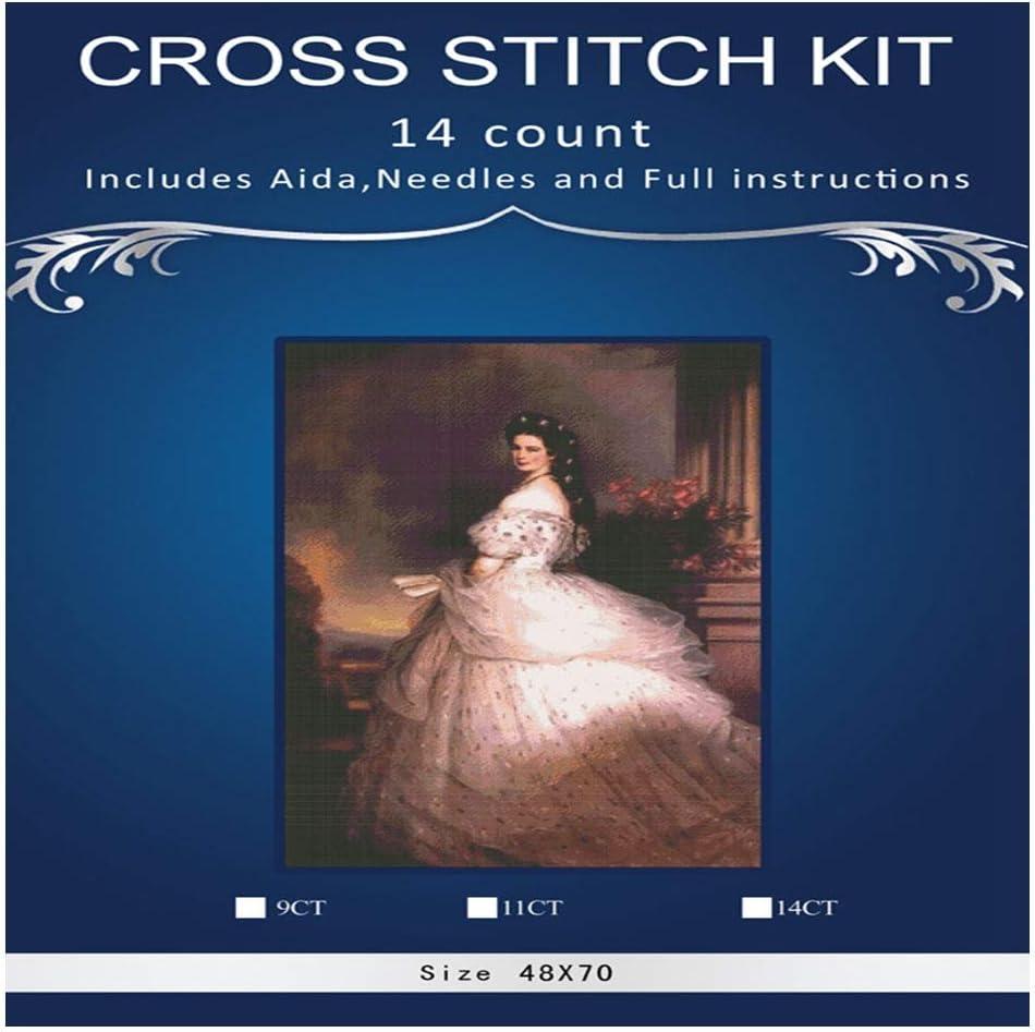 Aqiong Hibeilinq Kits Girl Art Bordado de la Costura Señora Sissy Princesa Artesanos 14CT sin Imprimir DMC Bricolaje Calidad Punto de Cruz Kit de Bordado (Size : 28CT unprinted)