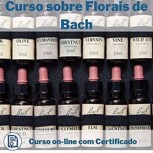 Curso Online de Florais de Bach com Certificado