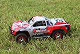 SummitLink Compatible Custom Body Red Replacement for 1/10 Scale RC Car or Truck (Truck not Included) SSJ-R-01