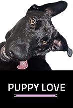 Puppy Love: Love Roxy