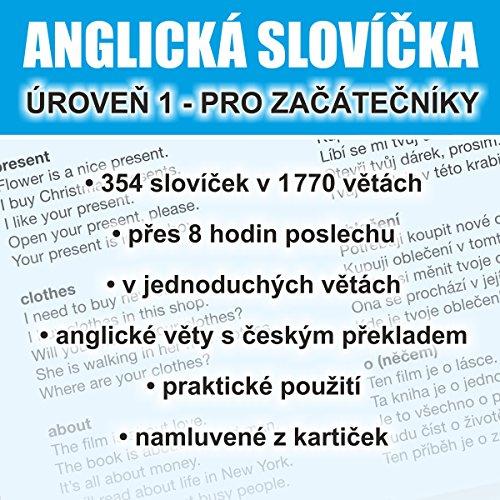 Anglická slovícka - úroven 1 pro zacátecníky Titelbild
