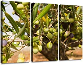 Olive Tree Print On Canvas Wall Artwork Modern Photography Home Decor Unique Pattern Stretched and Framed 3 Piece