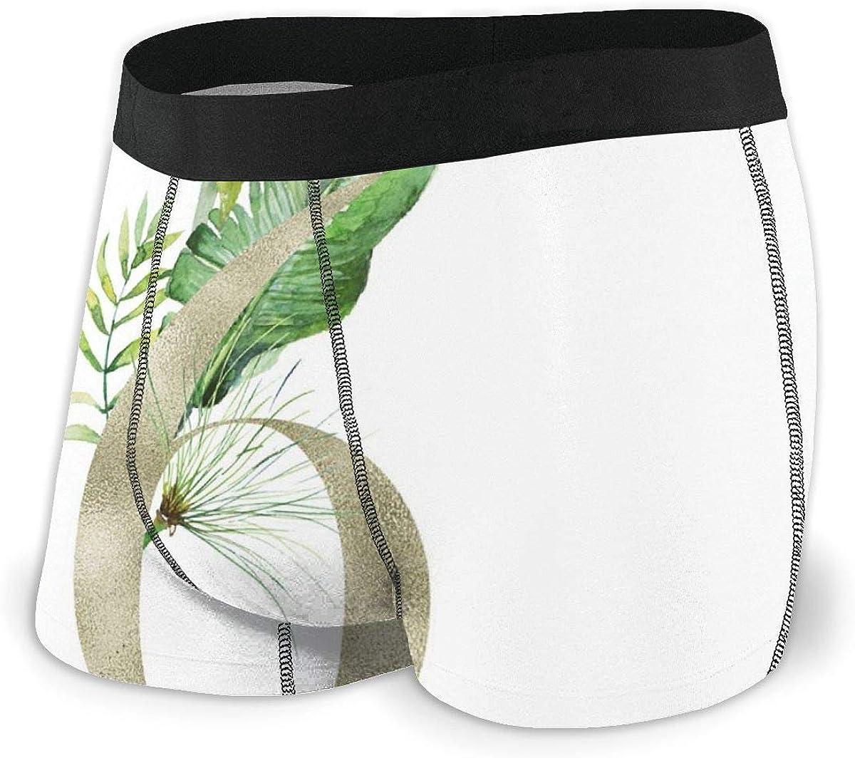 Mens Underwear Floral Tropical Numbers 6 Boys Boxer Briefs Trunks Low Rise Underpants Man