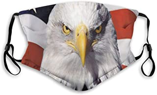 American Patriotic Eagle Mask Anti Dust Pollution Mask,Washable PM2.5 Face Mask With Adjustable Straps Mask