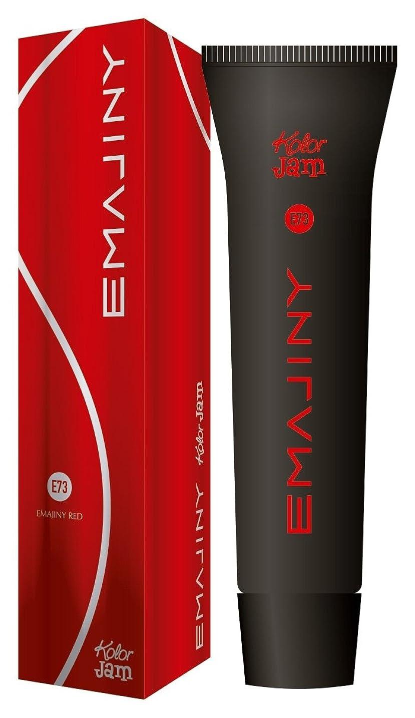 一元化するエネルギー新鮮なEMAJINY エマジニー カラージャム 75g Red レッド E73