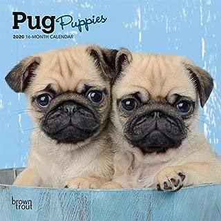 Best mini pug calendar Reviews