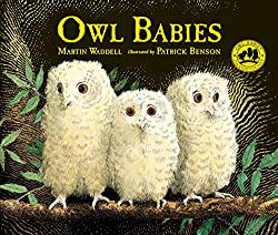 Sweet Bedtime Stories for Babies and Toddlers - Picture Books We