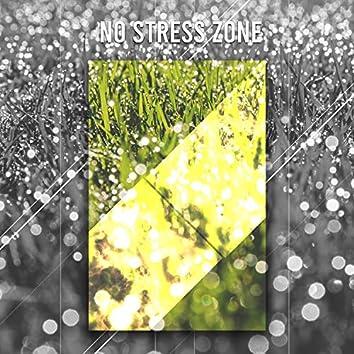 0 Stress Relaxation: 40 Rain Tracks