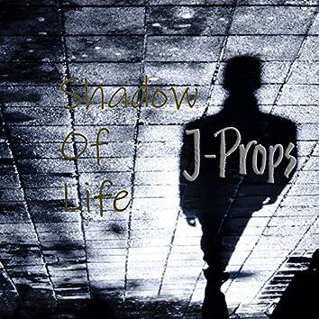 Shadow Of Life