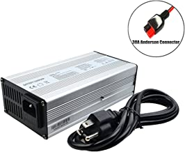 LI DO 24V Battery Charger 24V 10A Charger 29.4V Charger 24V Lithium Battery Charger E-Bike/Scooter Battery Charger with Anderson Connector (29.4V 10A Anderson)
