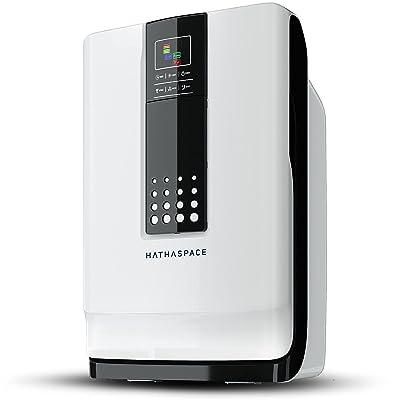 Hathaspace HSP001 Smart True HEPA Air Purifier for Home