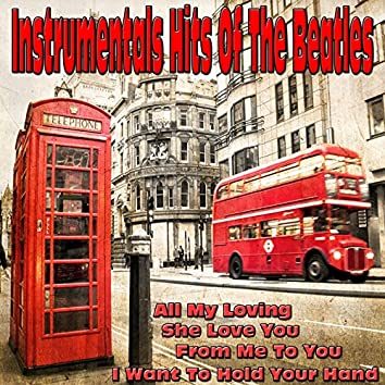 Instrumentals Hits of the Beatles