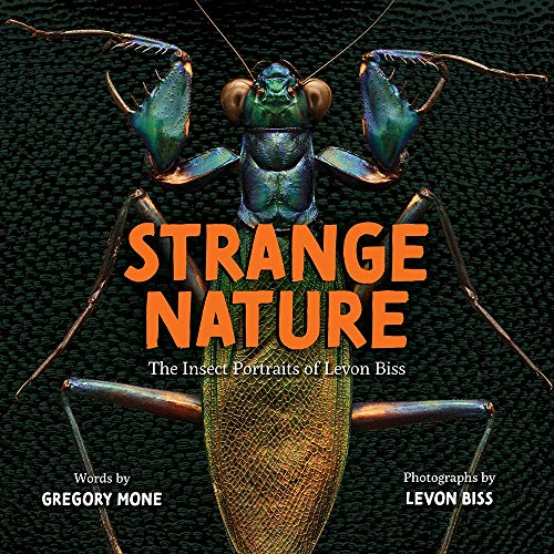 Strange Nature: The Insect Portraits of Levon Biss