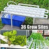 水耕栽培キット、水耕栽培システム、PVC水耕園芸植物システム、36サイト4パイプ、1層
