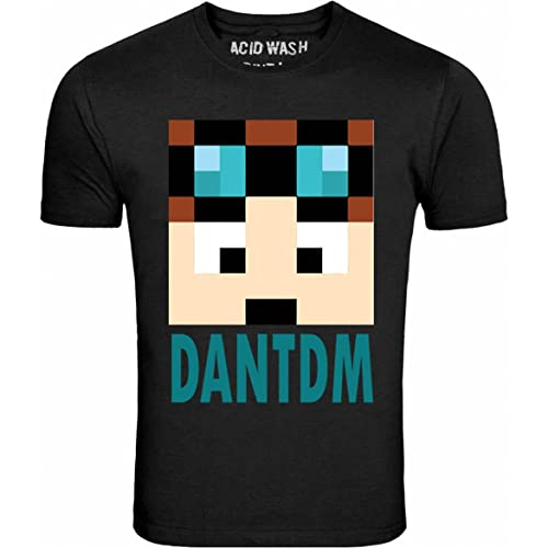 80e62acef ACID WASH PRINT LTD DAN TDM The Diamond Minecraft Kids & Adults T Shirt