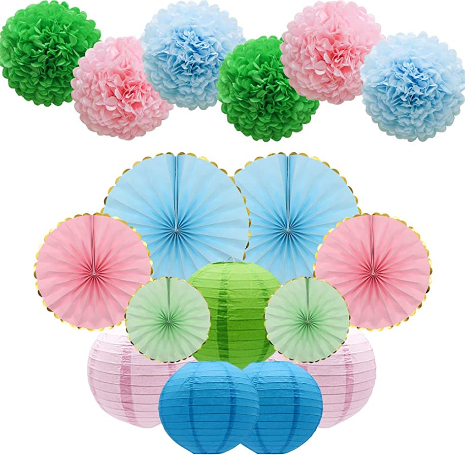 17pcs Party Decoration Supplies Set, Tissue Paper Pom Poms Flowers Paper Lanterns Hanging Paper Fans for Birthday, Bridal, Baby Shower, Wedding, Graduation, School (Pink, Green, Blue)