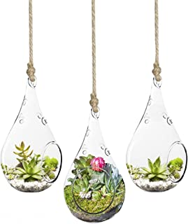 SunGrow 3-Piece Teardrop Hanging Terrarium, Mini Hanging Garden, Various Creative DIY Projects, Functional Home Or Office Dãƒcor, Transparent Heat-Resistant and Durable High Boron Silicon Glass