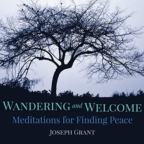 Wandering and Welcome audiobook cover art