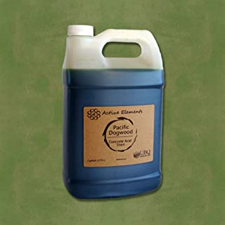 Concrete Stain Acid Stain for Coloring Interior Concrete Pacific Dogwood (Light Green Color) 1 Gallon
