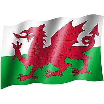 Flagge Fahne Wales Hissflagge 90 x 150 cm